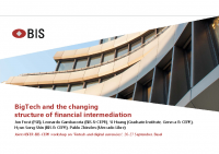 2. Bigtech and the changing structure of financial intermediation (Presentation)