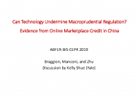 3. Can technology undermine macroprudential regulation (Discussion Paper)