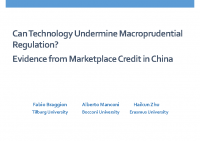 3. Can technology undermine macroprudential regulation (Presentation)