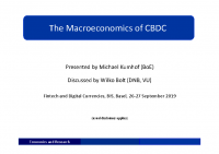 7. The macroeconomics of Central-Bank-Issued digital currencies (Discussion Paper)