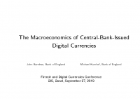 7. The macroeconomics of Central-Bank-Issued digital currencies (Presentation)