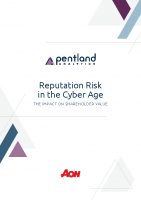 Reputation Risk in the Cyber Age